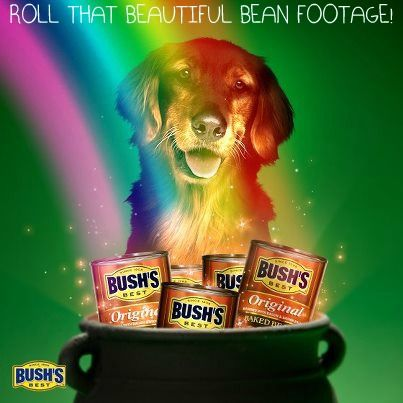 Pin On Yummy Bush S Beans