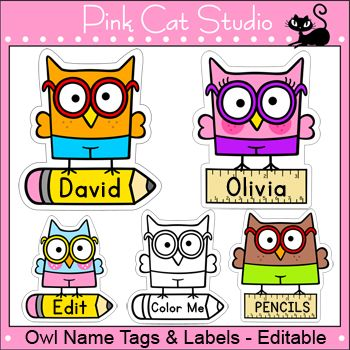 Smarty Pants Owls Theme Classroom - Name Tags and Labels - Editable by Pink Cat Studio | Pink Cat Studio