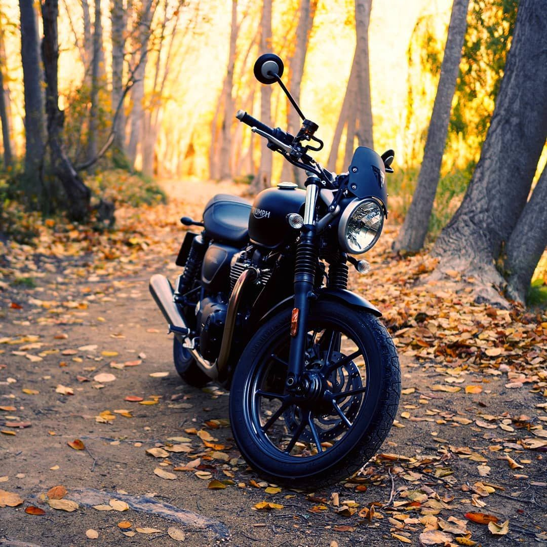 Autumn Autum Fall Nature Motorbike Motorcycle Nakedbike
