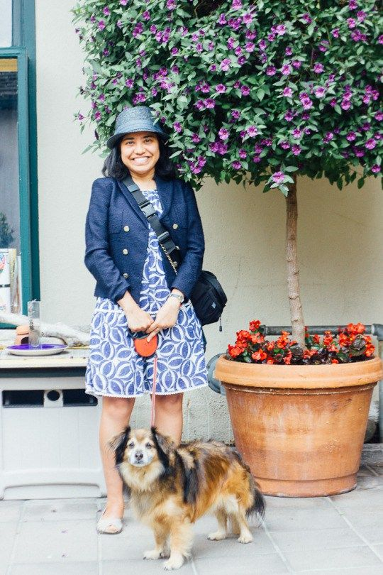 Best Of Dog Friendly Carmel California A Guide To Activities Hotels Beach And Pet