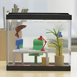 fish for office. I Have This Fish Office!!!! Mine Is Currently Empty :( TDL For Office F