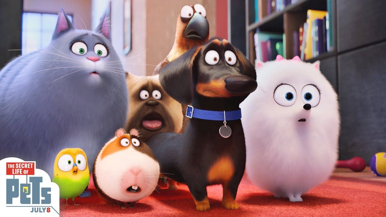 The Secret Life Of Pets Trailer 3 Hd Illumination Pets Movie Pet Trailer Secret Life