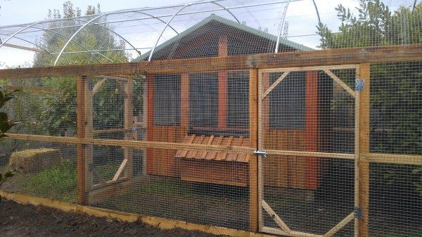 Chicken Coops Edible Gardens Chook Houses Backyard Vegetable