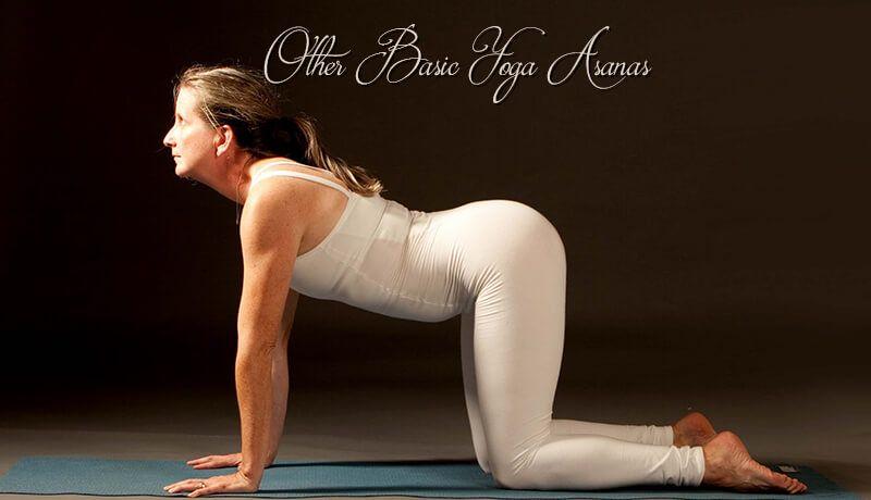 6-yoga-poses-of-the-deities | Basic yoga poses, Yoga