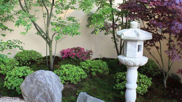 jardin japonais les plantes et arbres pour un jardin zen japonais plantes et jardins. Black Bedroom Furniture Sets. Home Design Ideas