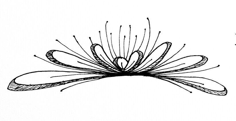 sketch by m dusek