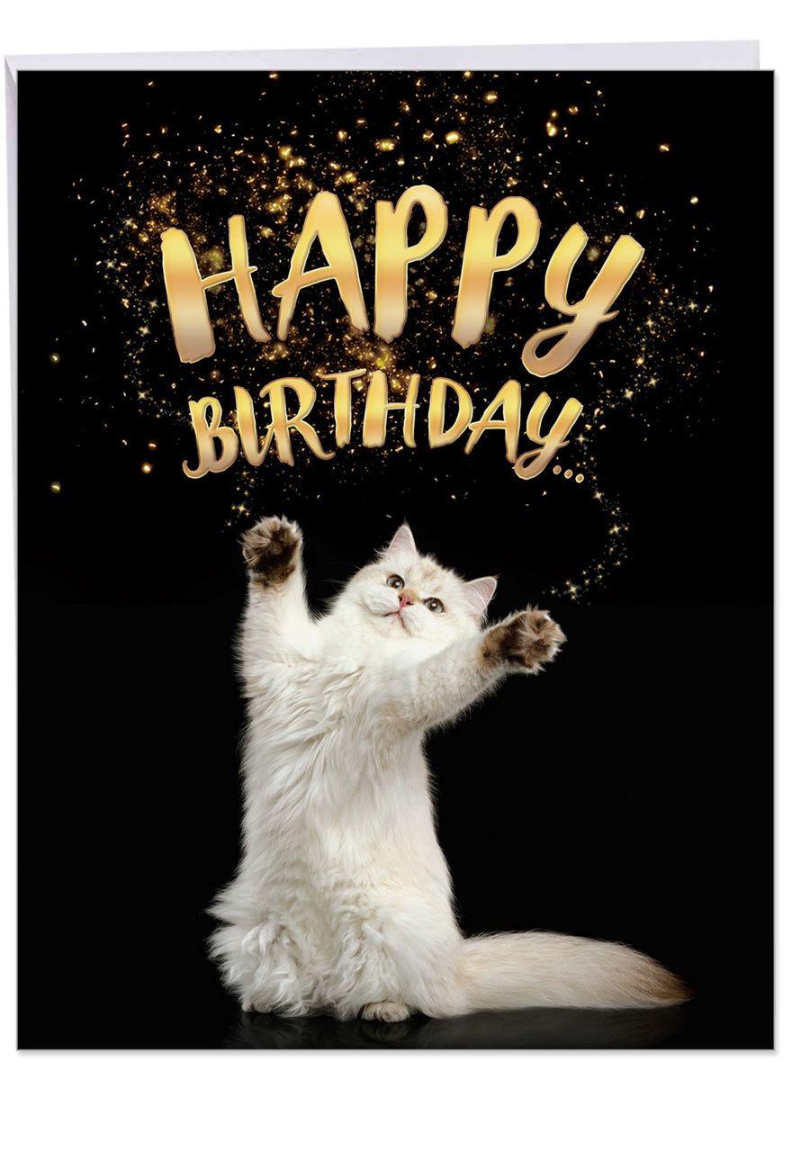J6112abd Cat Sent Greetings Jumbo Printed Card Happy Birthday Cat Happy Birthday Greetings Happy Birthday Wishes Cards
