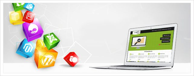 Enhance your Business with Professional Web Design