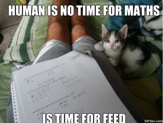 Is Never Time For Maths Best Funny Pictures Math Humor Math Jokes