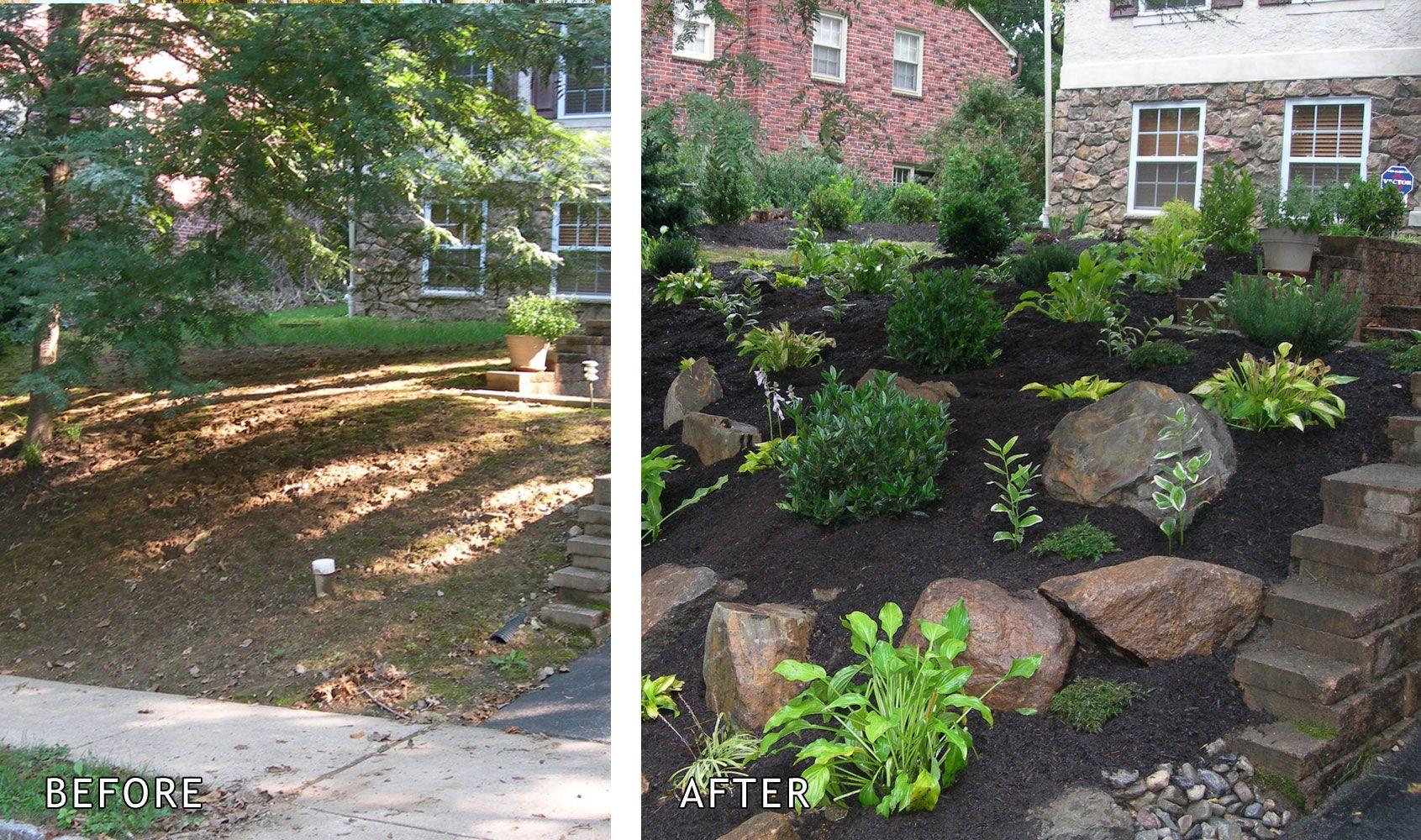 Front Garden Before After Naturescapes Front Yard Landscaping Backyard Garden Backyard
