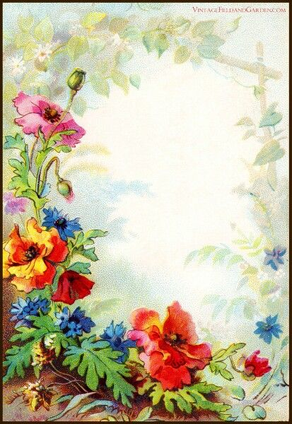 Vintage Field Garden Illustrated Border Flowers In A Victorian Cottage Gift Tag Of