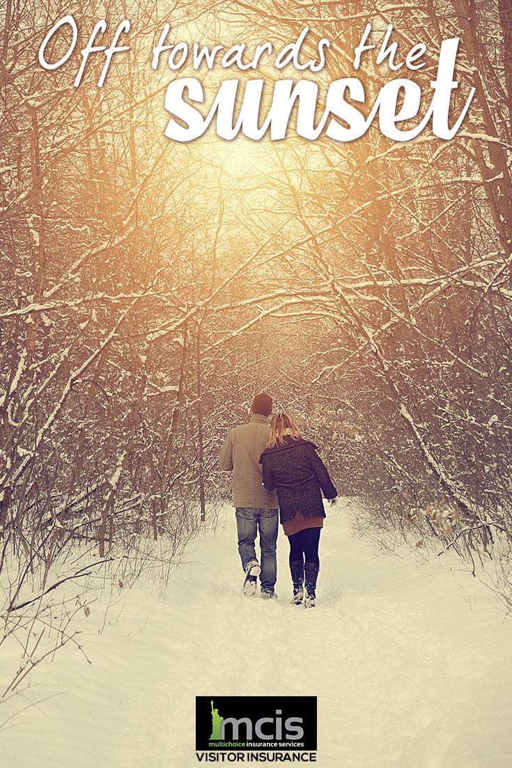 Enjoy a peaceful walk in the woods on a snowy evening but
