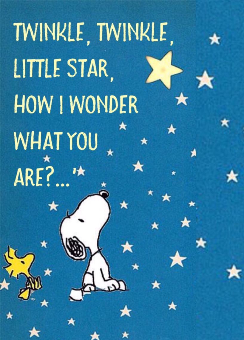 Twinkle, Twinkle, little star...\', Snoopy and Woodstock ✨ | #life ...