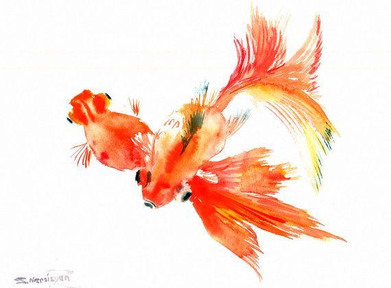 Goldfish Watercolor Paintings Goldfish Original Watercolor