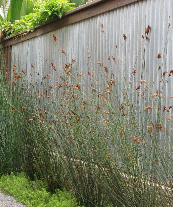 Galvanized Metal Fence Diy Backyard Ideas On A Budget Garden