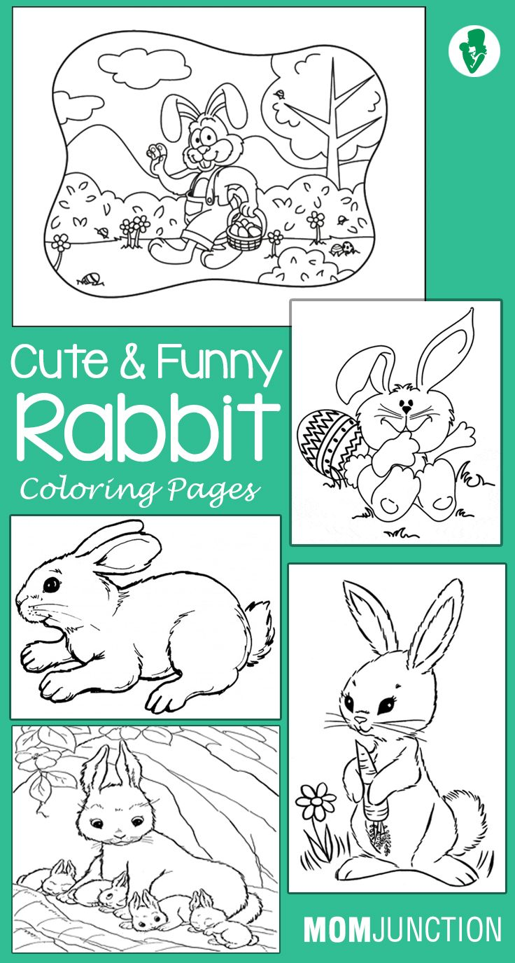 Top 10 Free Printable Rabbit Coloring Pages Online | Pinterest ...