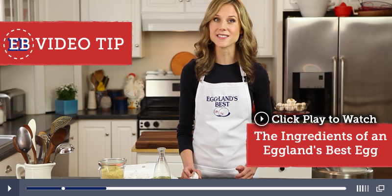 Ever wonder what makes EB eggs so nutritious? Watch this quick video to find out! http://www.egglandsbest.com/video-library.aspx
