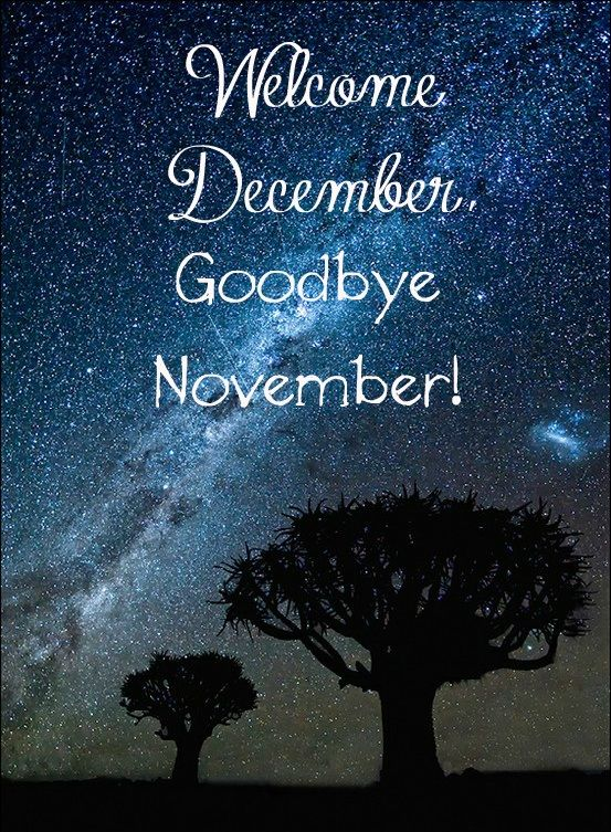 Goodbye December | Hello december quotes, Welcome december ...
