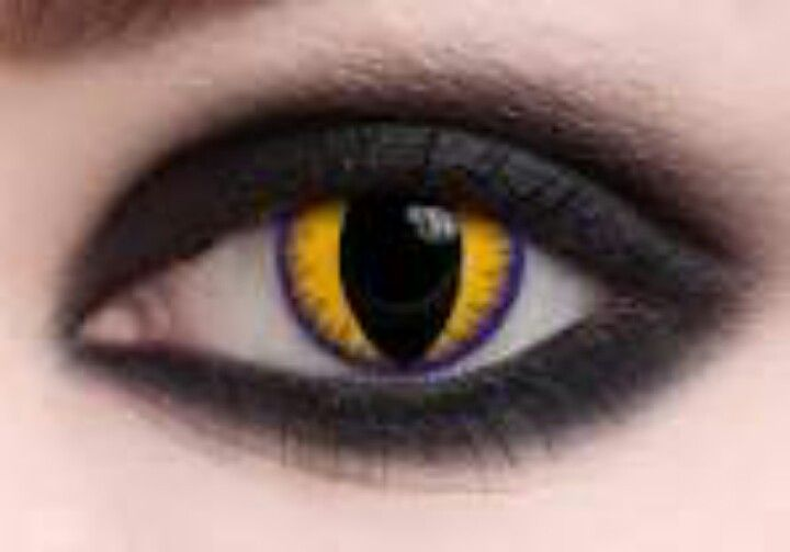 Yellow Cat Eye Contact Wild Contact Lenses Cat Eye Contacts