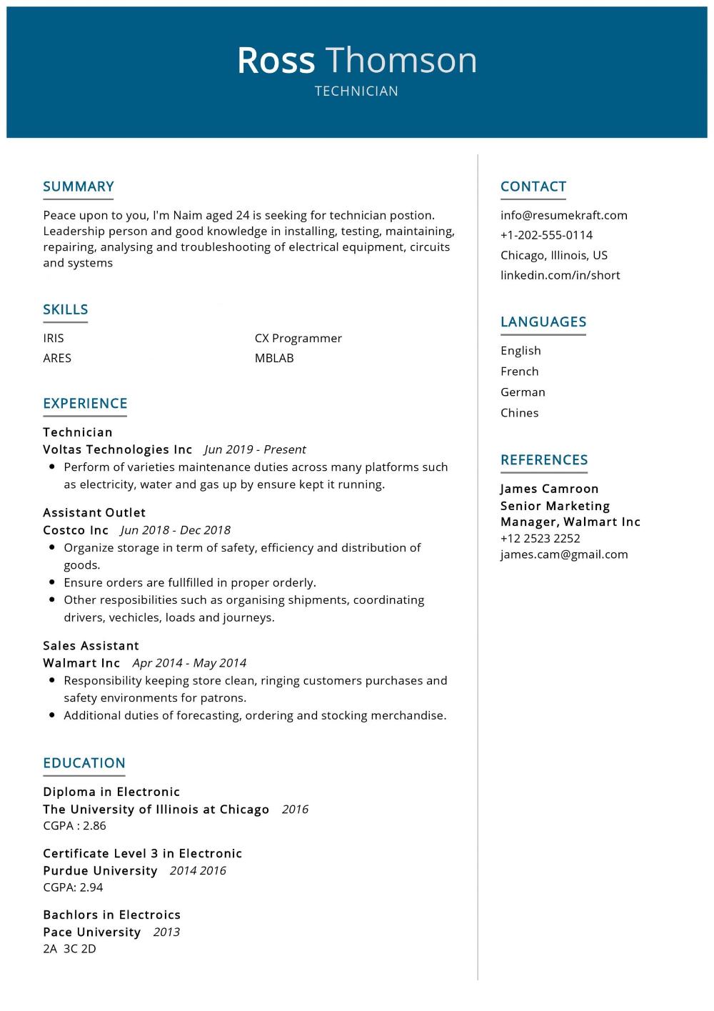100 Professional Resume Samples For 2020 Resumekraft In 2020 Professional Resume Samples Resume Resume Examples