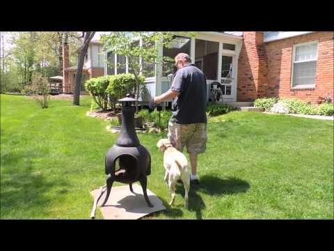 Dog Training Glove Dog Training Utah County Dog Training 63119
