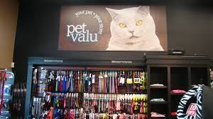 Image Result For Pet Valu Store Displays Store Display Display