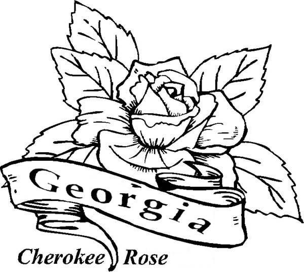 Rose Color Sheet Rose Coloring Pages Cherokee Flag