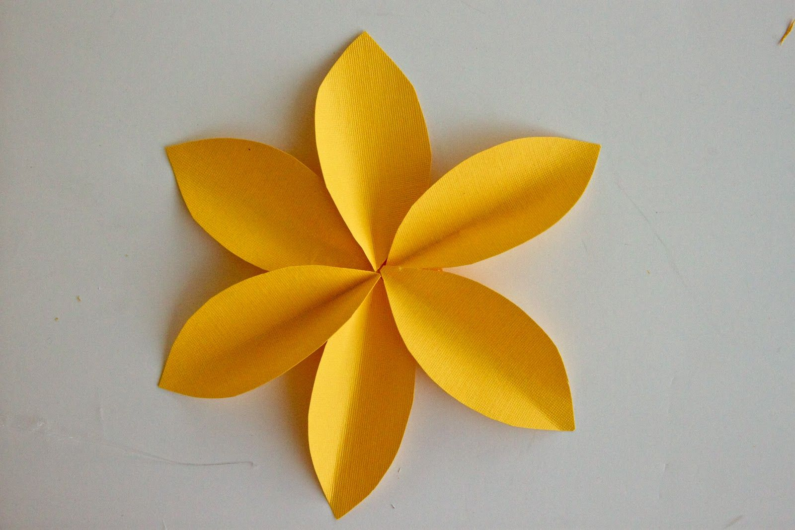 Paper Flower Wall Art | Dolls