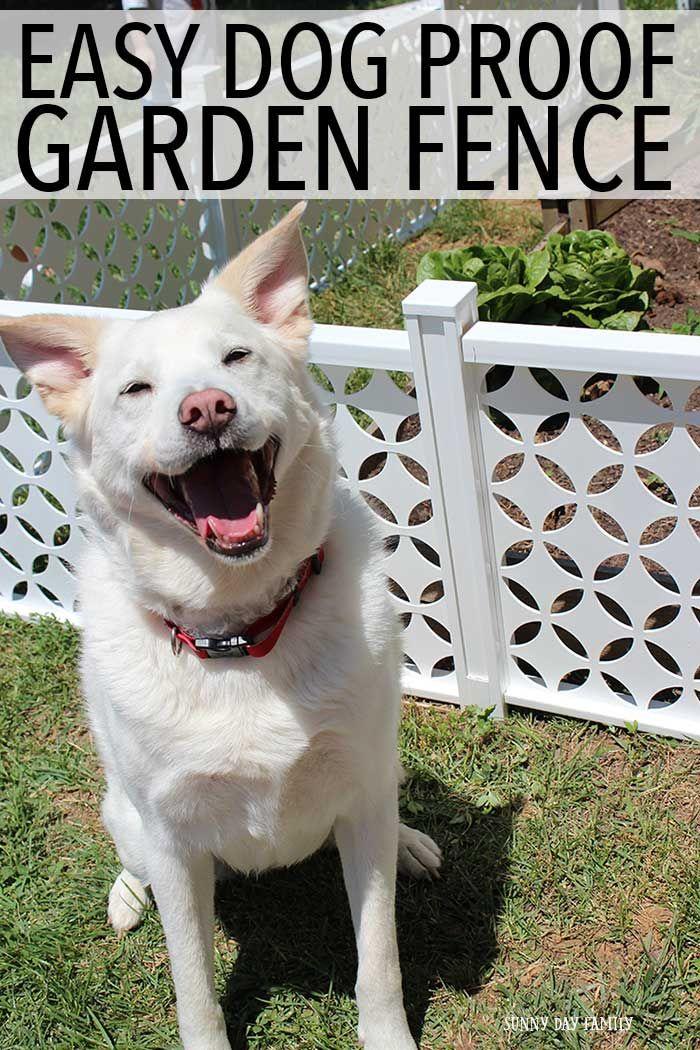 Easy Dog Proof Garden Fence | Dog garden, Diy garden fence ...