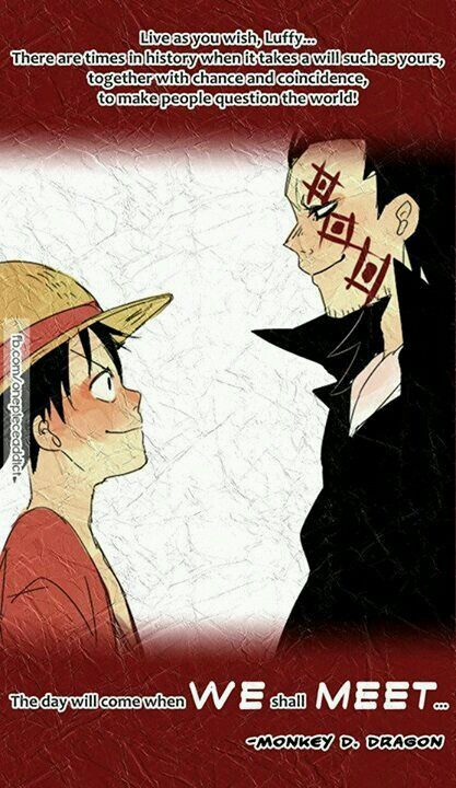 Monkey D Luffy And His Dad Monkey D Dragon One Piece