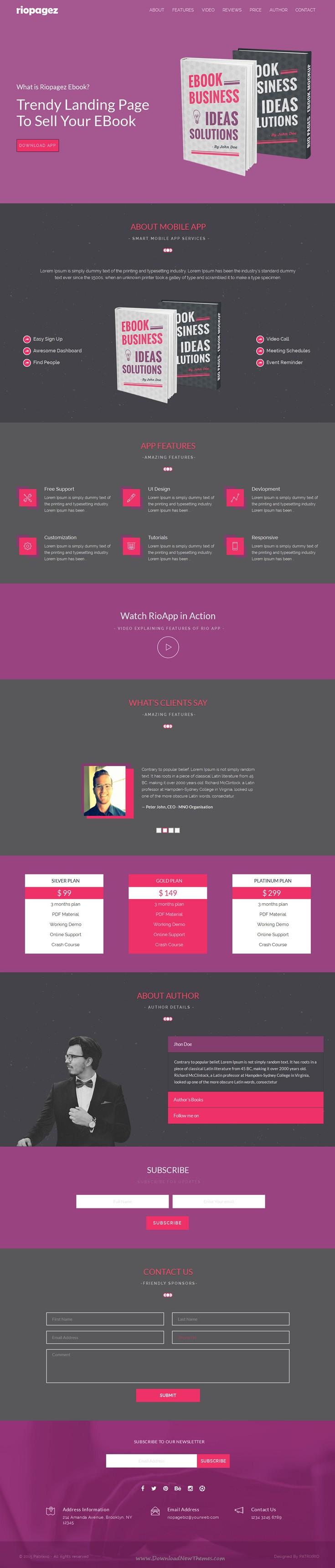 Rio Pagez Multipurpose Landing Pages | Web development