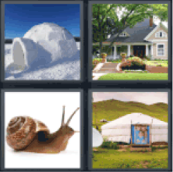 Answers and cheats of the popular game 4 pics 1 word 5 letters