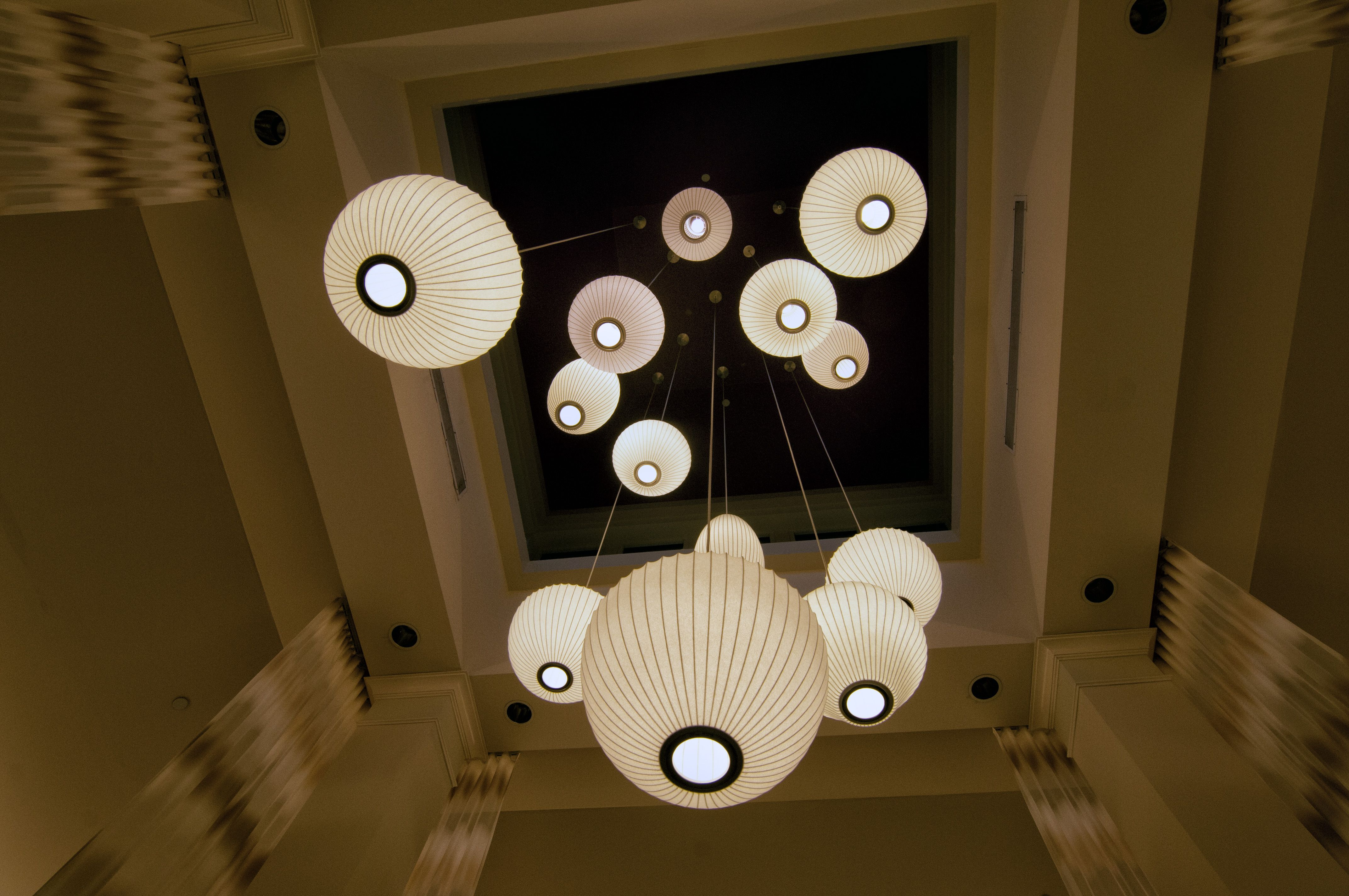 Look up in our lobby! At the Hilton Garden Inn Sarasota Bradenton ...
