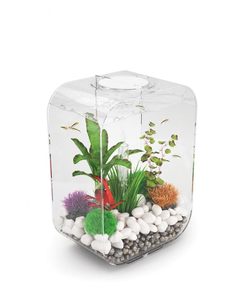 biorb life 15 clear | BETTAS AND SMALL AQUARIUMS | Pinterest ...