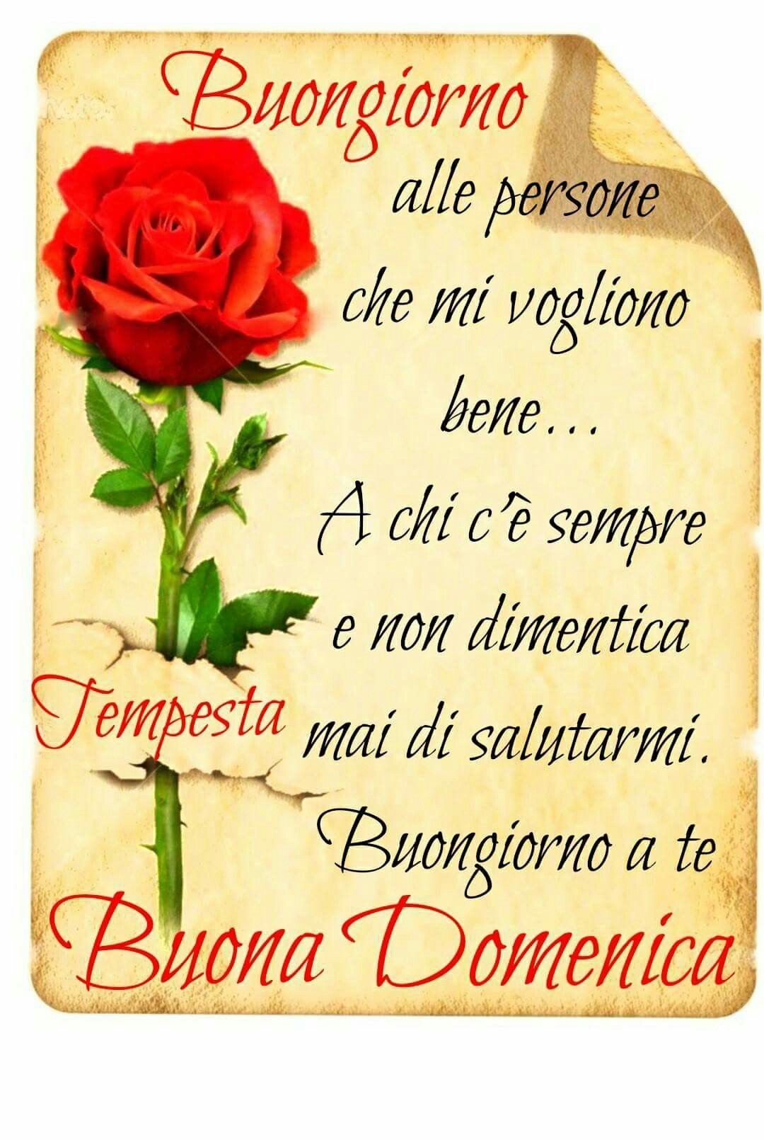 Buongiorno Buona Domenica Buona Domenica Good Morning E Italian