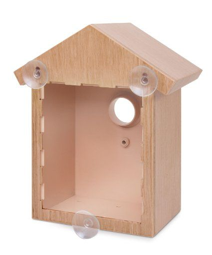 Amazon Com See Through Bird House Window Birdhouse Easy Build