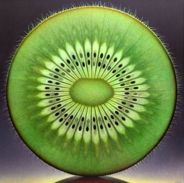 """The Precision-of-Design-in-Nature ...  as Revealed by the KIwi-Fruit-in-Cross-section; """"by dennis wojtkiewicz"""" #green #food"""