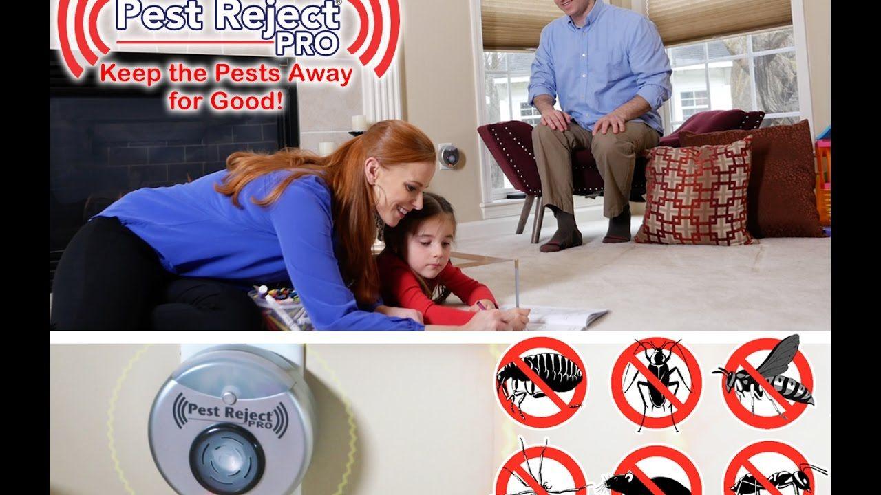 neatmaster ultrasonic pest repellent reviews Ultrasonic