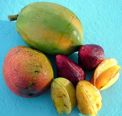 fruits of Jamaica