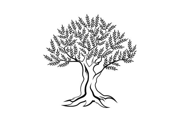 Vector Olive Tree Silhouette Tree Silhouette Vector Illustration Olive Tree Tattoos