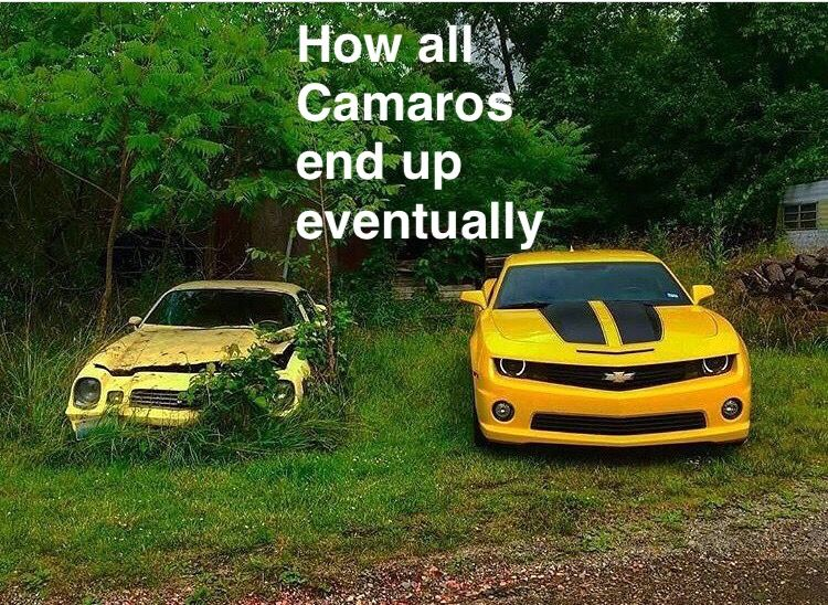 Pin by dis white boy cant jump on ford car jokes chevy