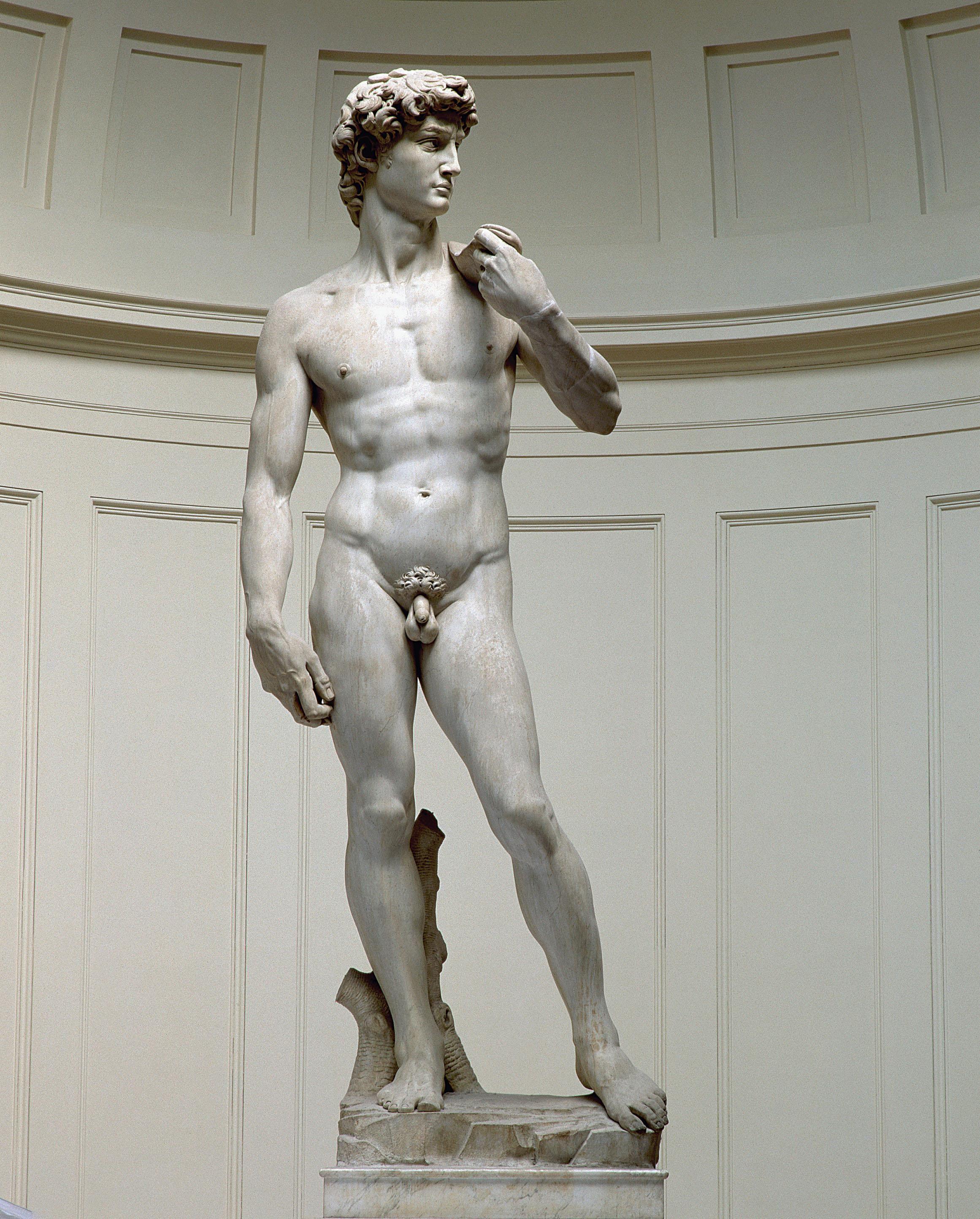 El David, de Miquel Àngel