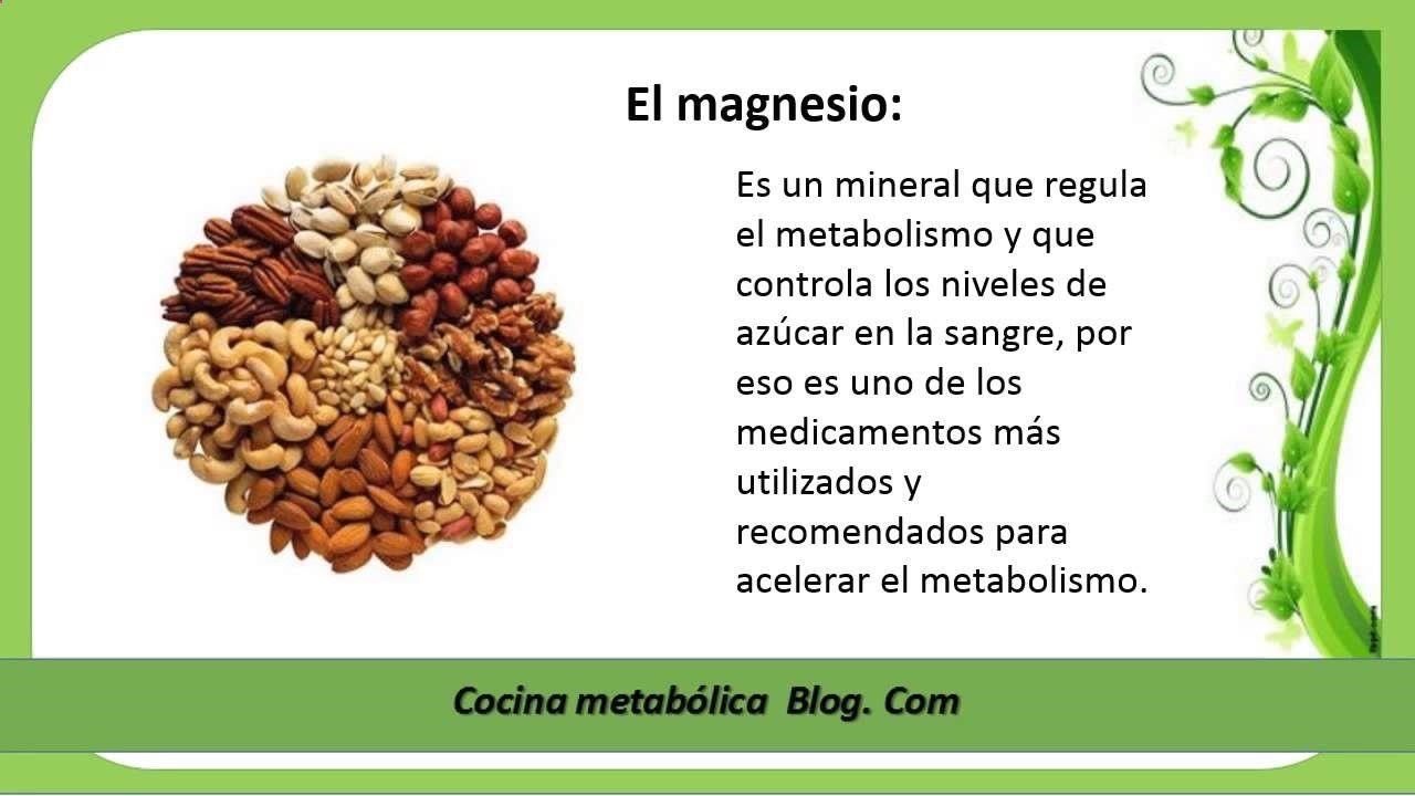 Como Conseguir La Perfecta Salud Y El Cuerpo Ideal Con Cocina Metabólica