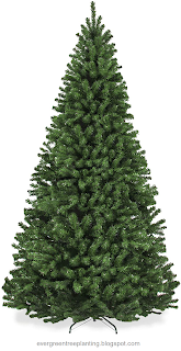 Hedging Plants Best Artificial Christmas Trees For Home Office Party Decorat Best Artificial Christmas Trees Artificial Christmas Tree Artificial Xmas Trees