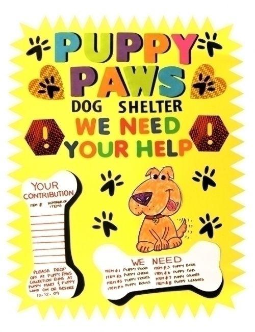 Make An Animal Shleter Poster Animal Shelter Fundraiser Poster