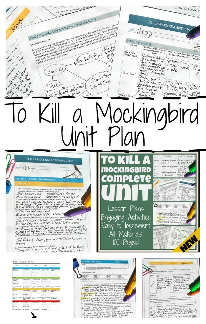 Illustration Essay Sample Teach To Kill A Mockingbird With This Complete Unit Plan Includes Lessons  Quotes Activities With Your Favorite Characters  Atticus Scout Jem  Essay On Teachers Day also Debate Essays To Kill A Mockingbird Unit Plan Bundle And Novel Study  Awesome  Excellent Essays Examples