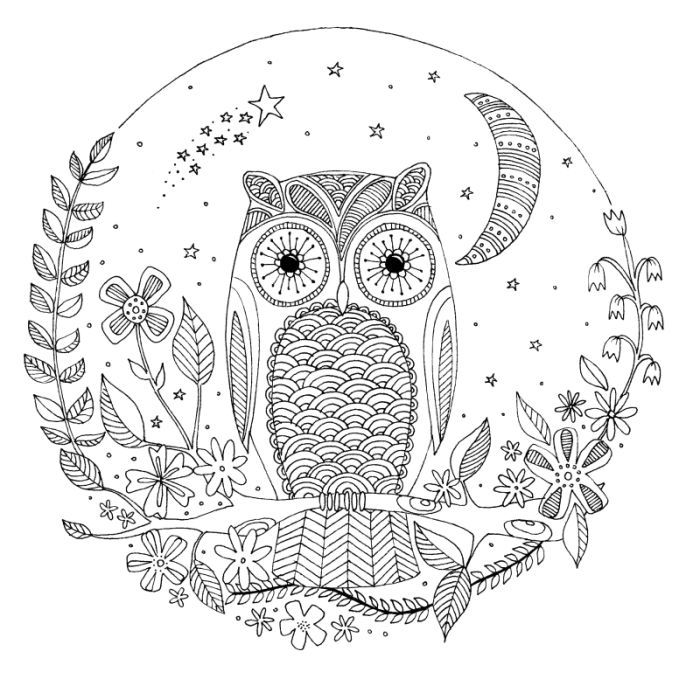 Lizzie Preston - Owl | ✐Zentangles ~ Adult Colouring | Pinterest