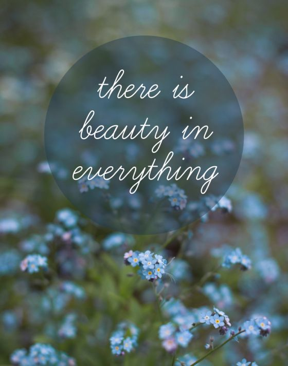 There Is Beauty In Everything Quotes Wise Words Inspiration