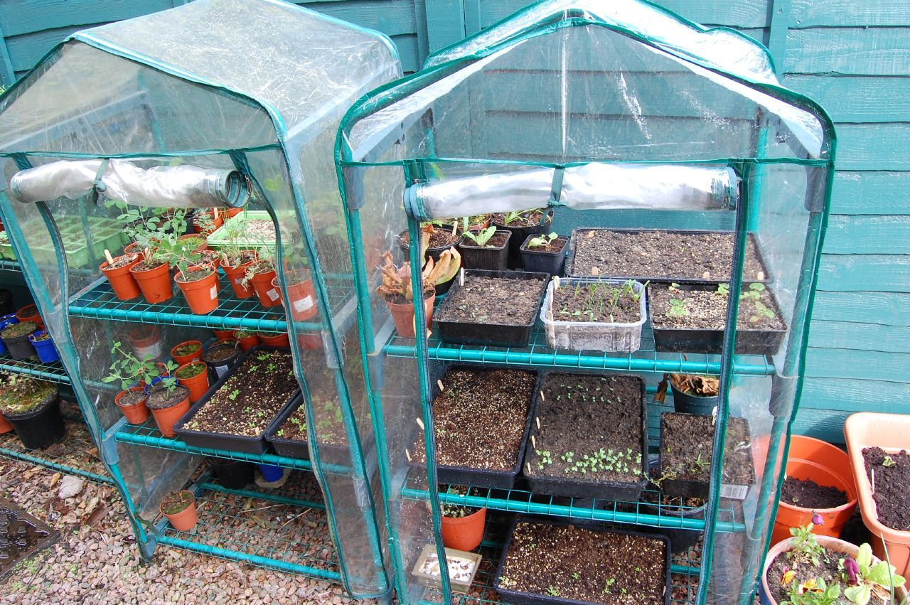 Grow Tent Benefits – Tips On Using Grow Tents For Plants 400 x 300