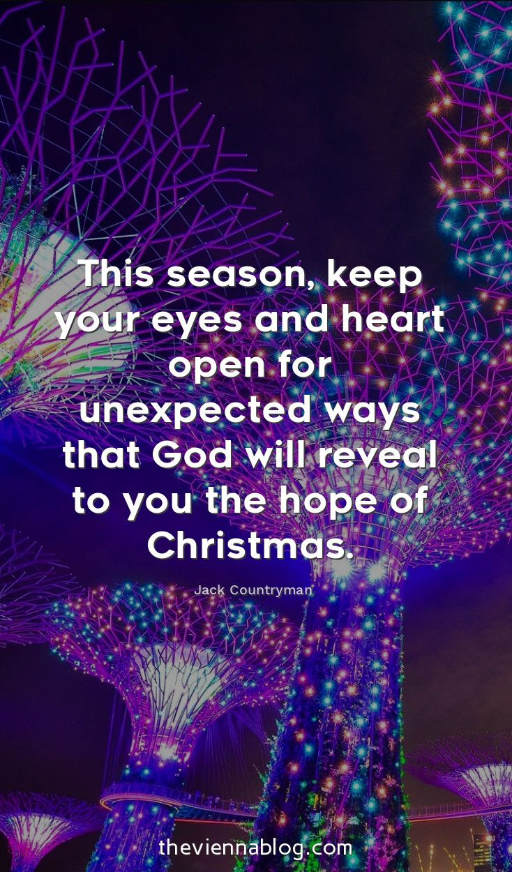 50 Best Christmas Quotes Of All Time The Vienna Blog Lifestyle Travel Blog In Vienna Best Christmas Quotes Christmas Quotes Christmas Quotes Inspirational